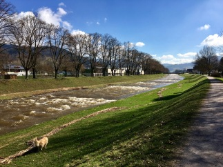 oberkirch - 5